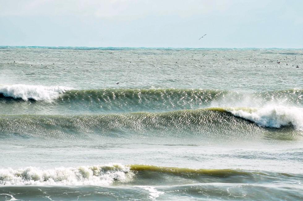 서핑_200128_001.jpg